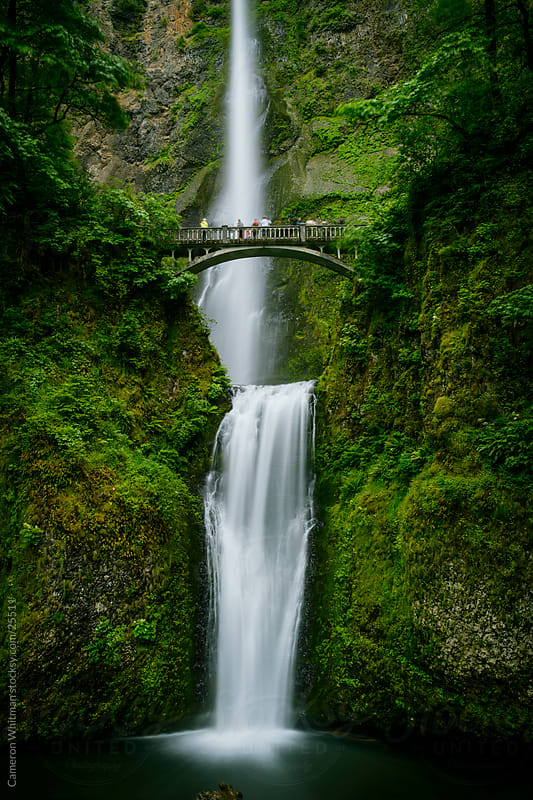 Multnomah Falls, Columbia River Gorge, Oregon  by Cameron Whitman for Stocksy United