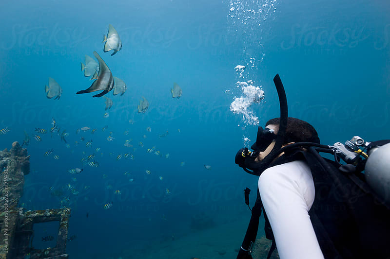 Portrait of a scuba diver looking at the batfish from a close distance underwater by Jovana Milanko for Stocksy United