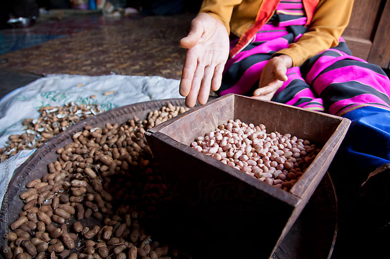 Shelling Peanuts by Diane Durongpisitkul for Stocksy United