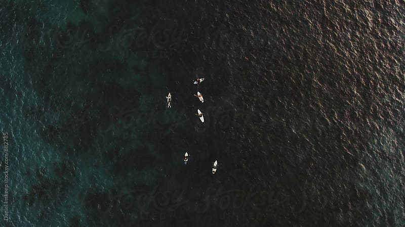 Bird's Eye Shot of a Group of Surfers by Daniel Inskeep for Stocksy United