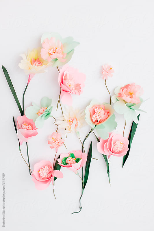 Paper Flowers Arrangement  by Katarina Radovic for Stocksy United