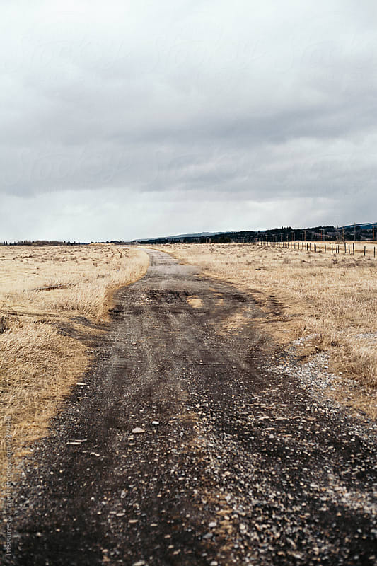 Rural dirt road and empty field by Treasures & Travels for Stocksy United