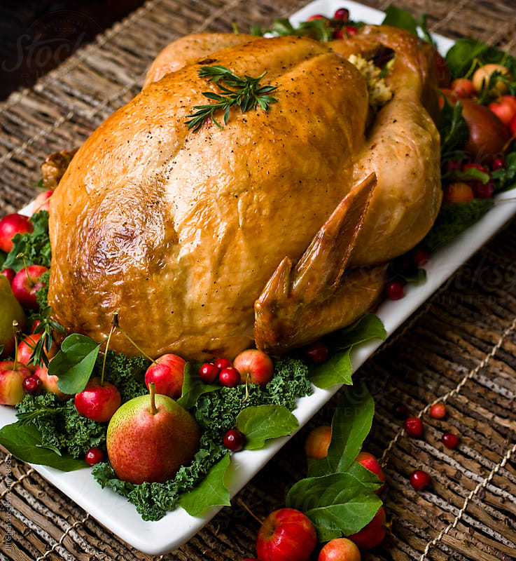 Festive Turkey by Jill Chen for Stocksy United