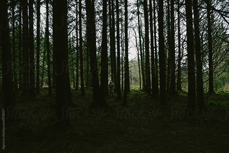 Dartmoor Forest by Agencia for Stocksy United
