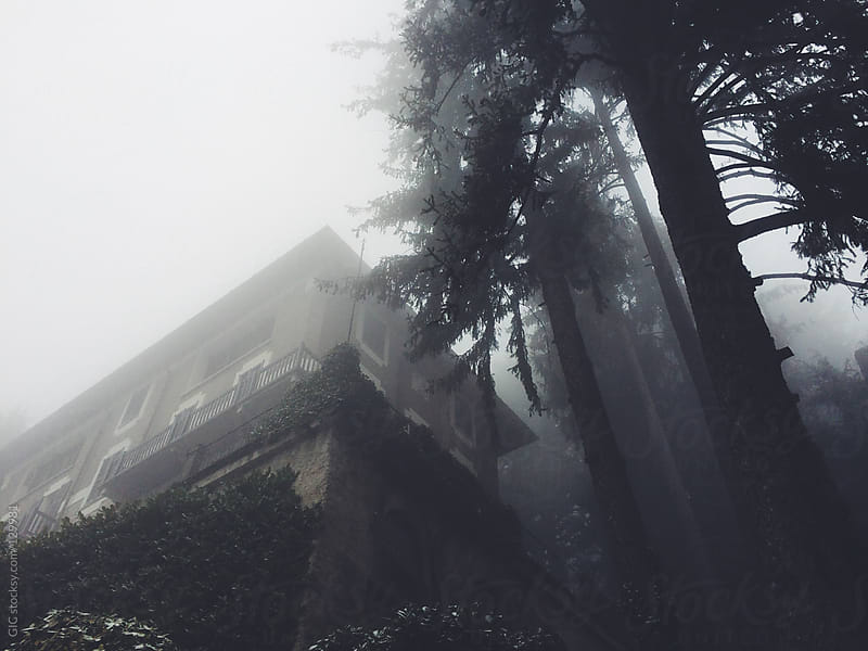 House in the fog by GIC for Stocksy United