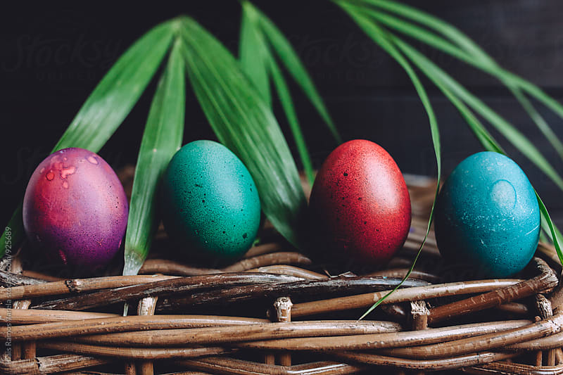 Easter eggs with a palm tree behind by Thais Ramos Varela for Stocksy United