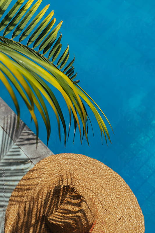 Tropical Summer Holiday. Green Palm Leaf & Straw Hat By Pool by Alexander Grabchilev for Stocksy United