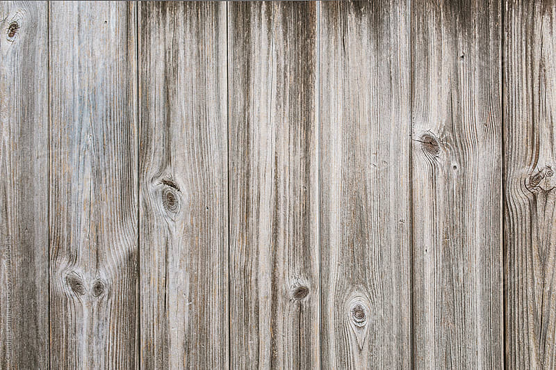Texture of a Worn and Weathered Wood Background by Claudia Lommel for Stocksy United