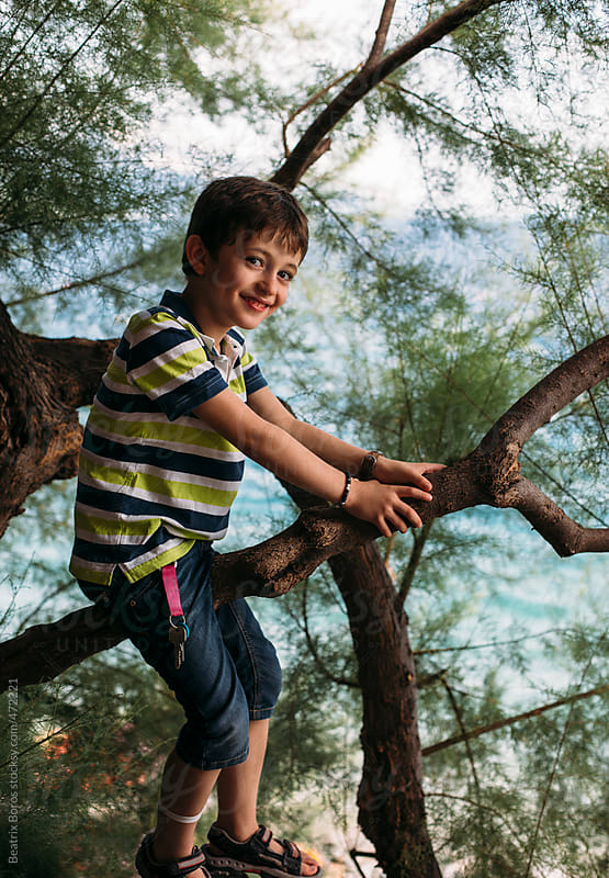 6 years old boy happily looking at camera while sitting on a pine branch by Beatrix Boros for Stocksy United