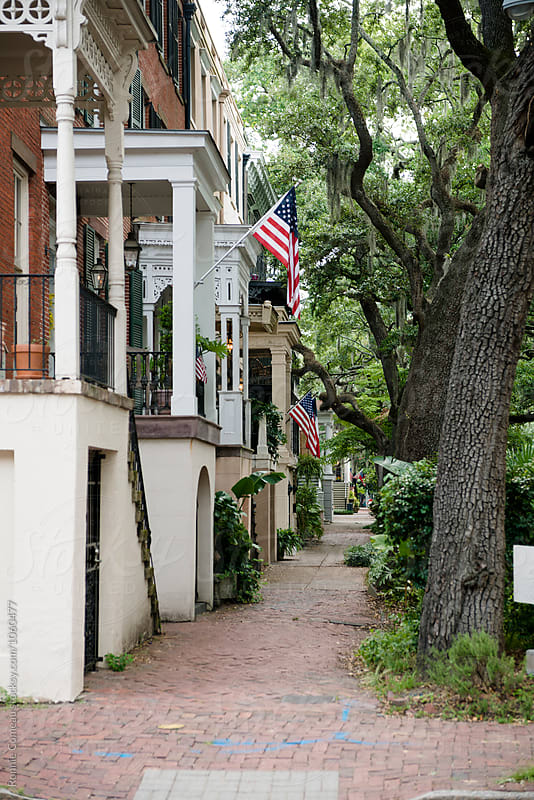 American Flags on Residential Street by Ronnie Comeau for Stocksy United