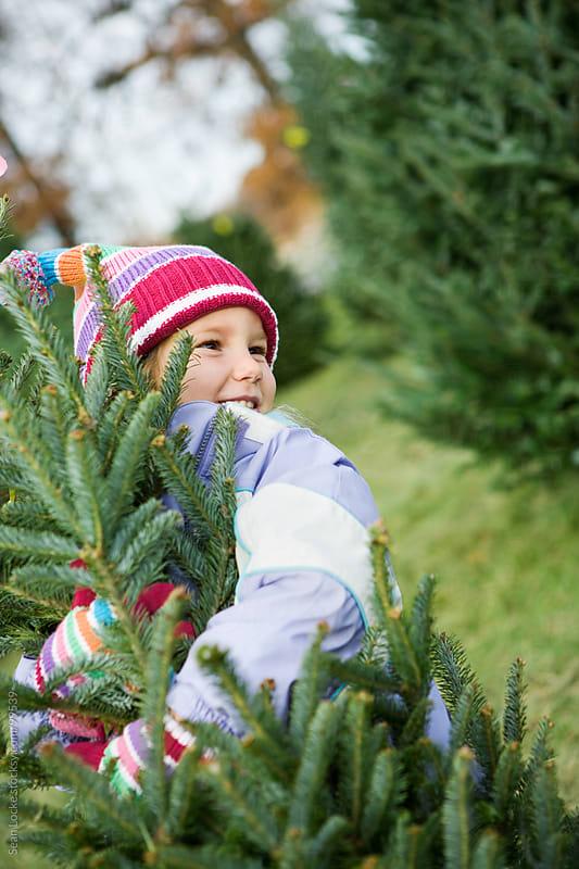 Tree Lot: Little Girl Hugs Christmas Tree by Sean Locke for Stocksy United