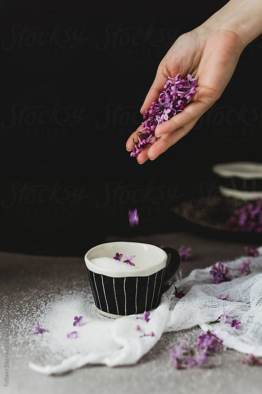 Making lilac sugar by Tatjana Ristanic for Stocksy United