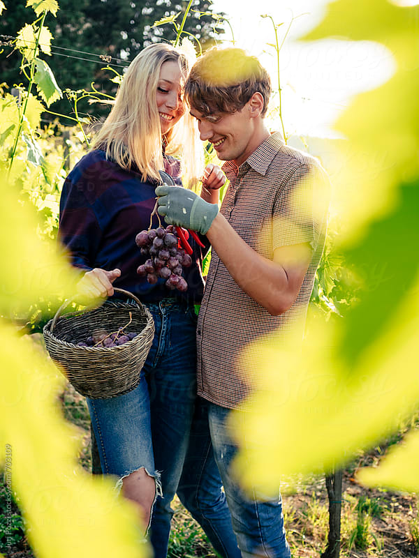 young couple working in a vineyard by Juri Pozzi for Stocksy United