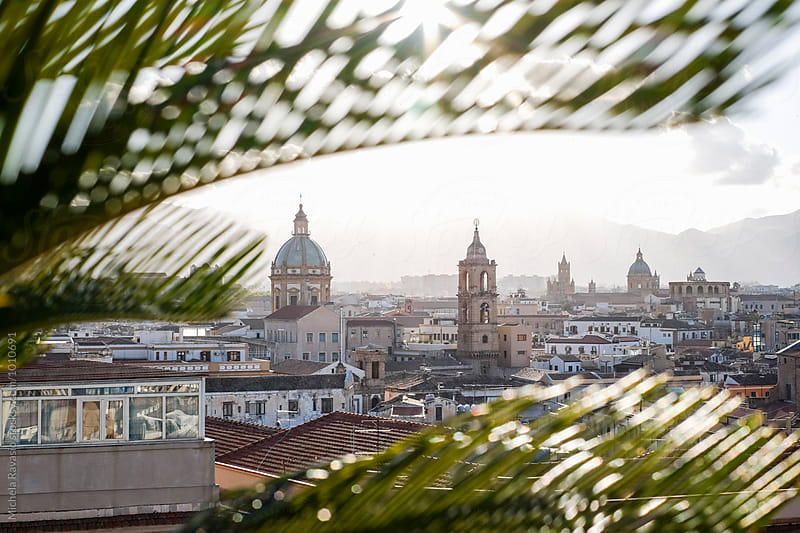 Palermo view among palm tree leaves by michela ravasio for Stocksy United