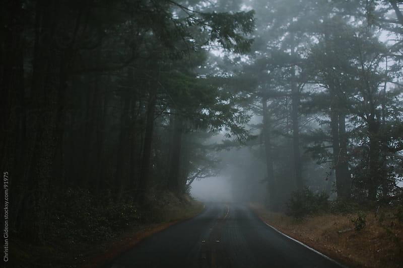 Mt. Tamalpais Fog by Christian Gideon for Stocksy United