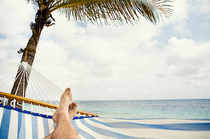 Hammock: Lying Under a Relaxing Palm By the Ocean by Sean Locke for Stocksy United