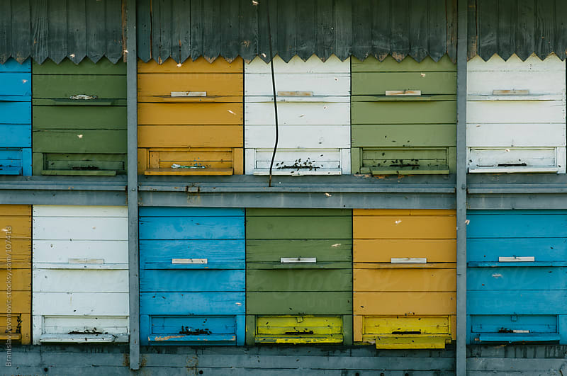 Colorful Bee Hives by Brkati Krokodil for Stocksy United