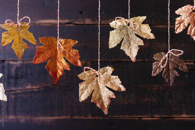 Suspended glittery fall leaves by Gabriel (Gabi) Bucataru for Stocksy United
