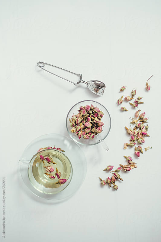 Rosebud Tea on the White Table by Aleksandra Jankovic for Stocksy United