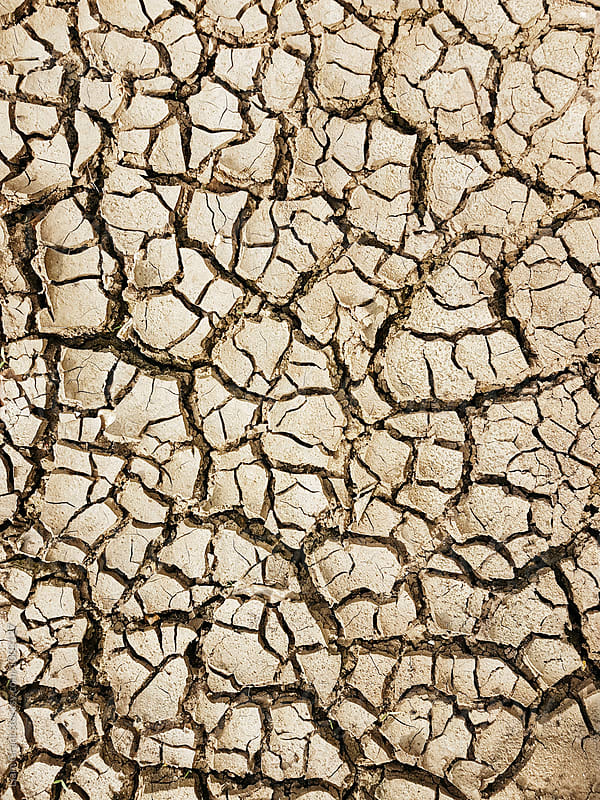 Detail of cracked, dry mud. Norfolk, UK. by Liam Grant for Stocksy United