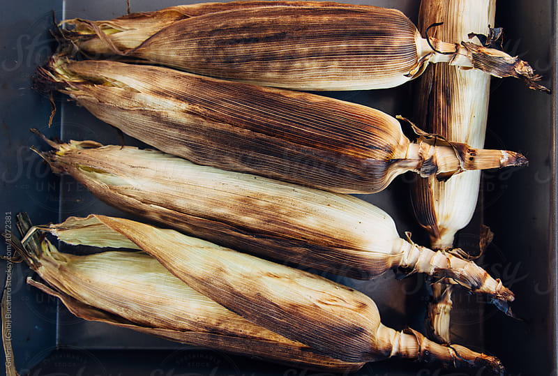 Grilled corn in husk by Gabriel (Gabi) Bucataru for Stocksy United