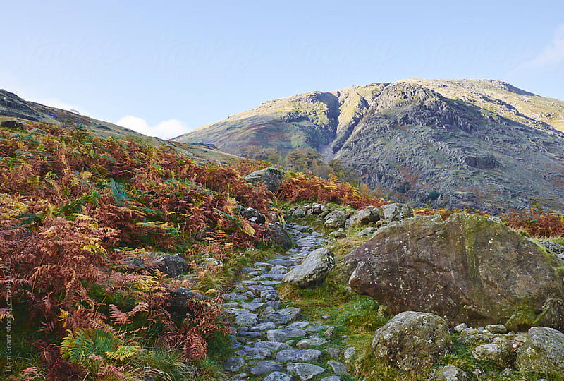 Footpath in the mountains. Cumbria, UK. by Liam Grant for Stocksy United