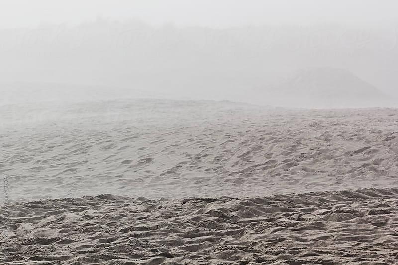 Beach on a foggy day by Melanie Kintz for Stocksy United