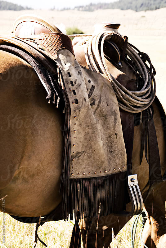 A saddled horse.  by Tana Teel for Stocksy United