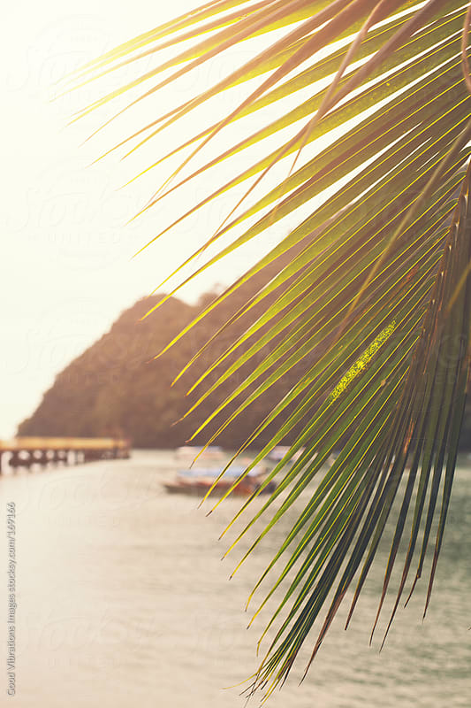 Sunset in a tropical island by Good Vibrations Images for Stocksy United