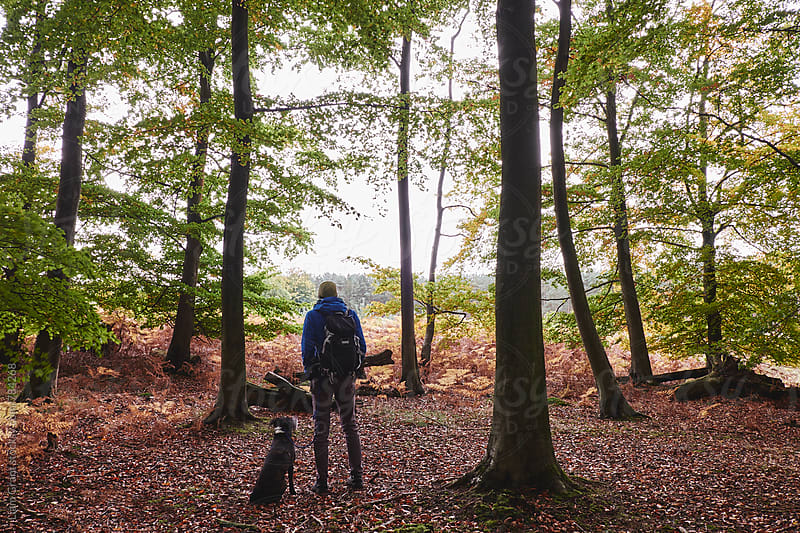 Male with his dog in autumnal woodland. Norfolk, UK. by Liam Grant for Stocksy United