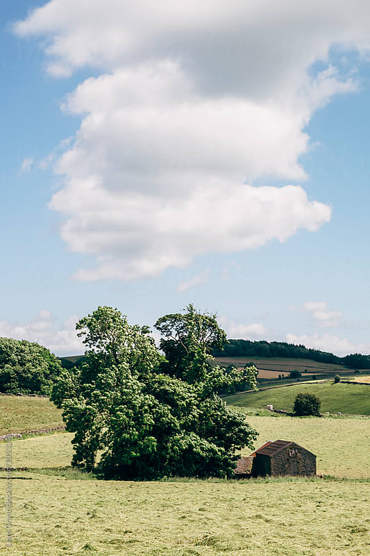 Remote barn in a field. Derbyshire Dales, UK. by Liam Grant for Stocksy United