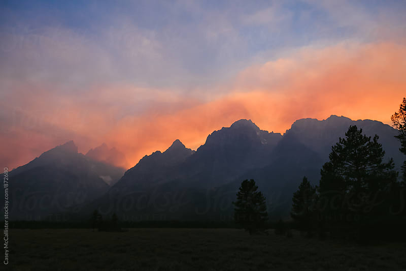 Forest Fire Sunset by Casey McCallister for Stocksy United