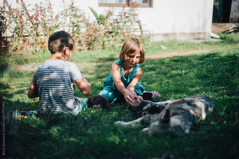 Brother and sister playing with young puppies on the grass by Boris Jovanovic for Stocksy United