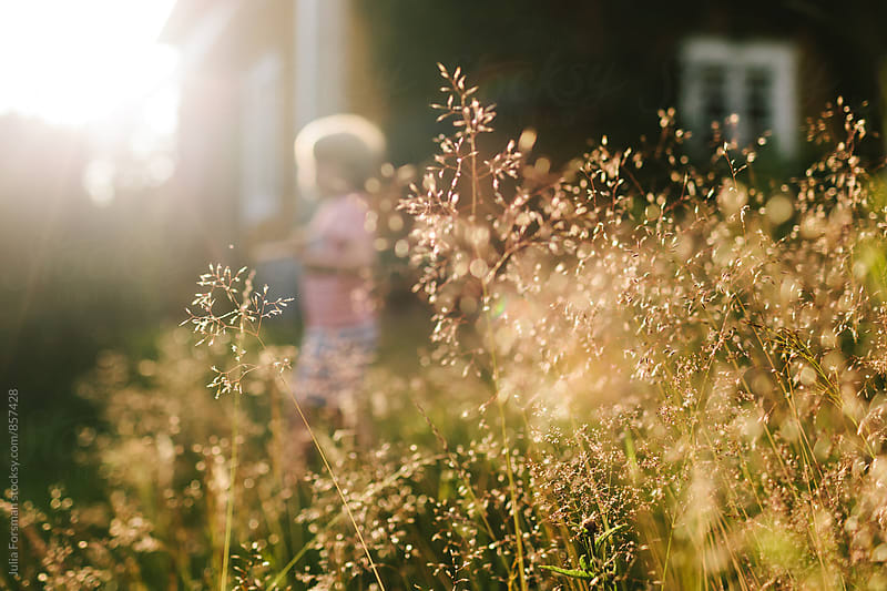 Sunlit grass and an out of focus child. by Julia Forsman for Stocksy United