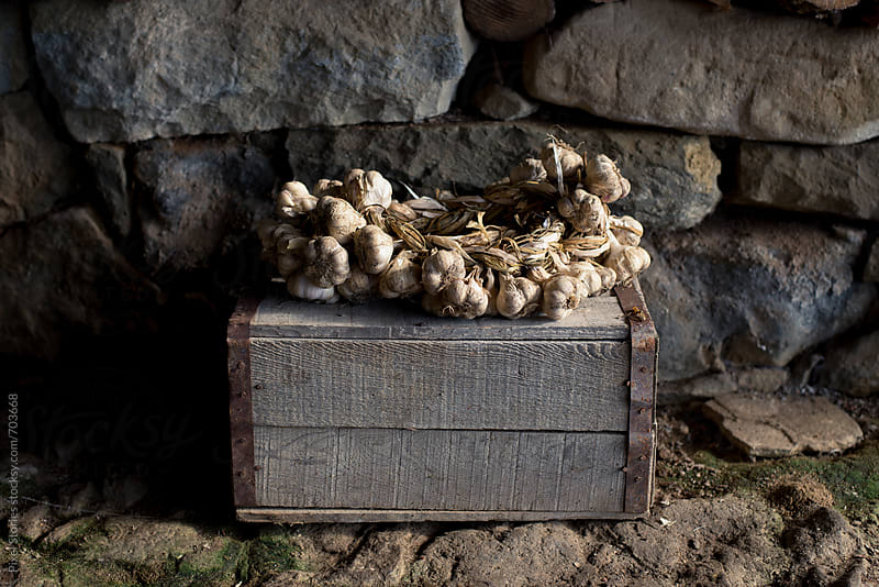 Garlic braid on old wooden crate by Pixel Stories for Stocksy United