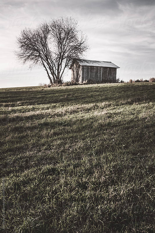 old barn by Andreas Gradin for Stocksy United