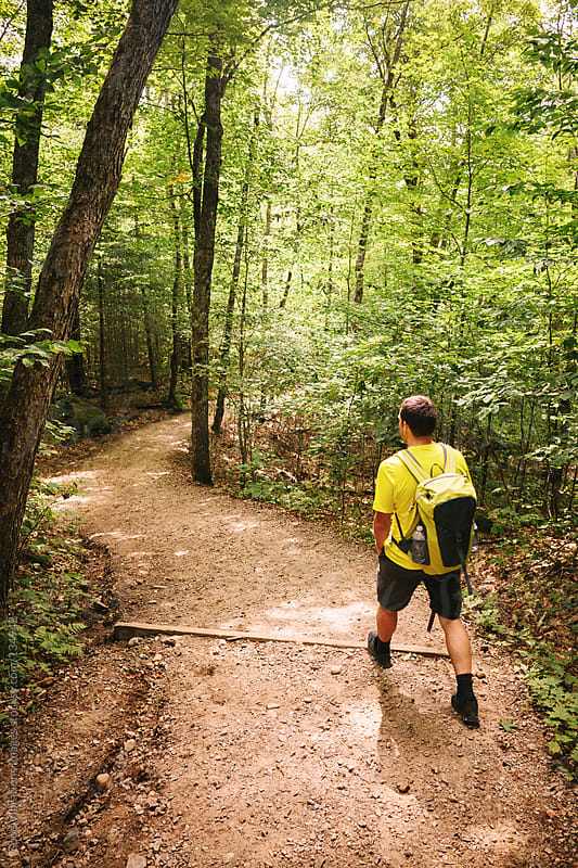 Man Hiking in the Forest by Good Vibrations Images for Stocksy United