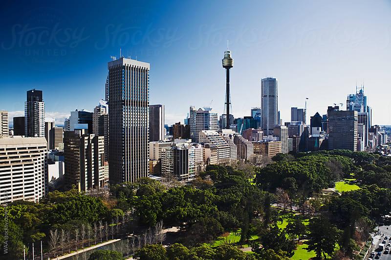 Sydney Skyline, Australia by WAA for Stocksy United