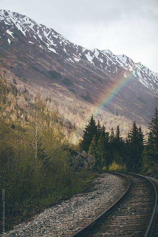 Beluga Rainbow 2 by Jake Elko for Stocksy United