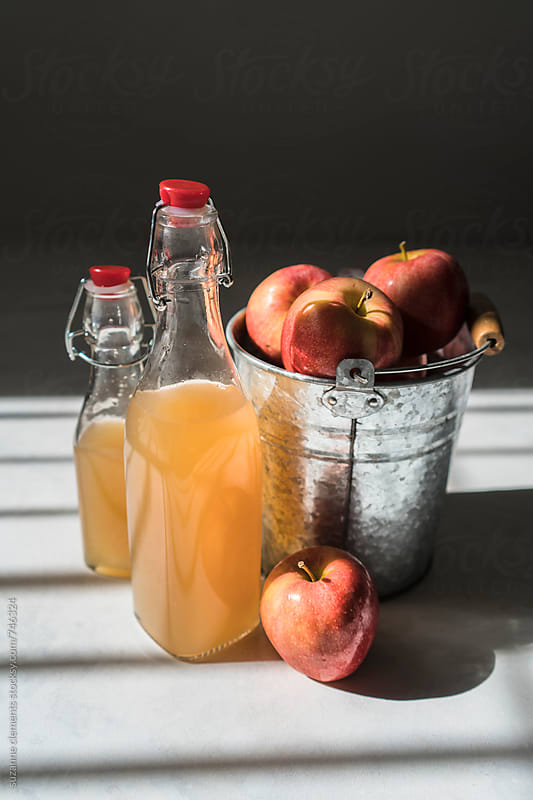 Homemade Apple Cider Vinegar by suzanne clements for Stocksy United