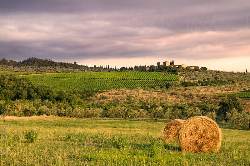 farm in the tuscany at sunset by Leander Nardin for Stocksy United