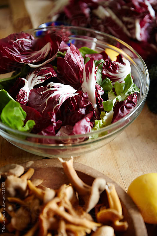 Butter lettuce and radicchio salad, wild mushrooms on kitchen counter by Trinette Reed for Stocksy United