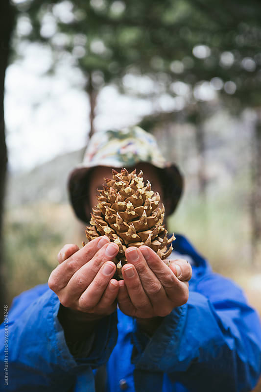 Man holding pinecone in the woods by Laura Austin for Stocksy United