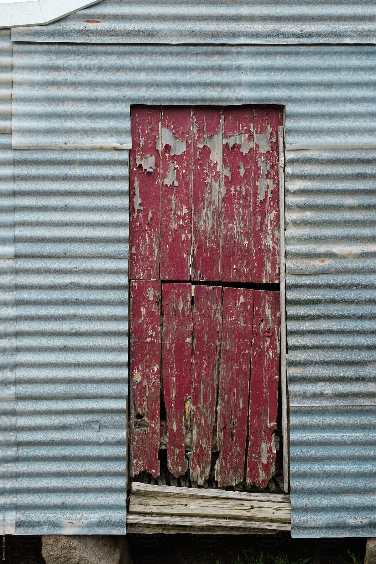Red Door Of Corrugated Barn By Rowena Naylor For Stocksy United