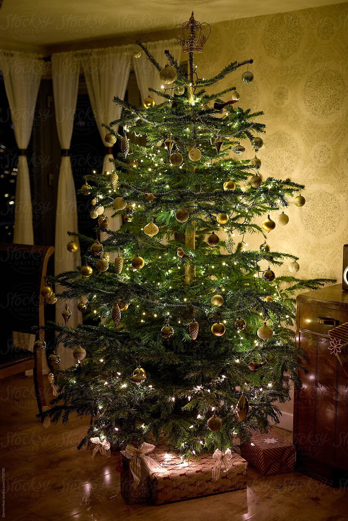 Traditional Real Christmas Tree In A Living Room At Night