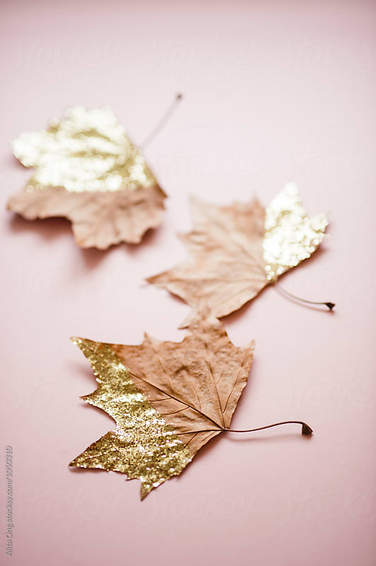 Glittery autumn leaves by Alita Ong for Stocksy United