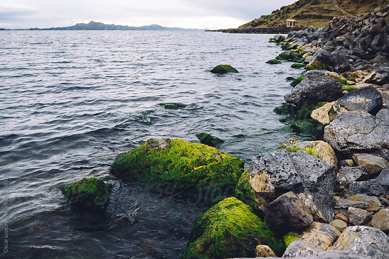 Lake Shore with Mossy Rocks by Oscar Lopez for Stocksy United