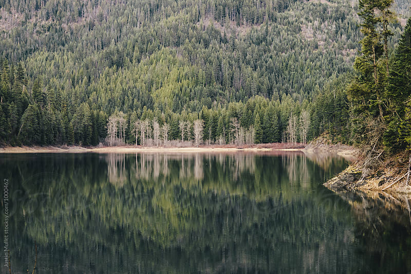 Reflections on quiet mountain lake by Justin Mullet for Stocksy United