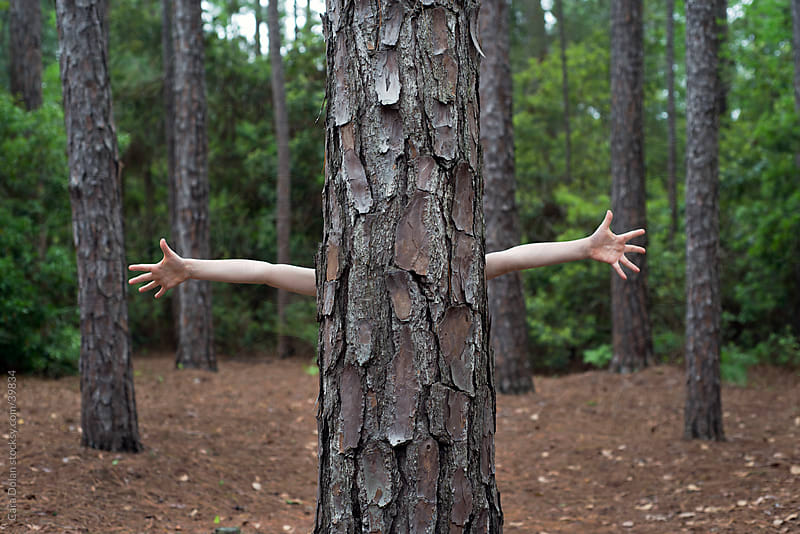 Child's arms stick out from behind a tree by Cara Slifka for Stocksy United
