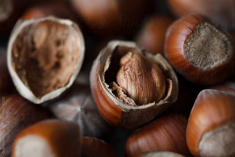 Hazelnuts (close-up) by Dobránska Renáta for Stocksy United